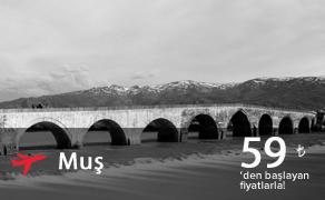 Muş Uçak Bileti | En Uygun Muş Bileti Fiyatları : plusFLY.com