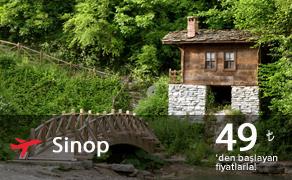 Sinop Uçak Bileti | En Uygun Sinop Bileti Fiyatları : plusFLY.com
