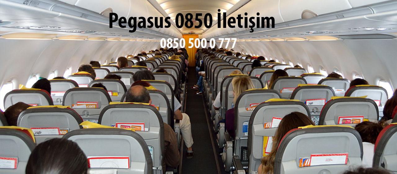 pegasus 0850 iletişim nuamrası