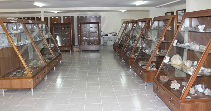 Ali Demirsoy Doğa Tarihi Müzesi