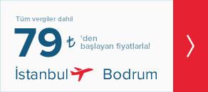 istanbul bodrum uçak bileti
